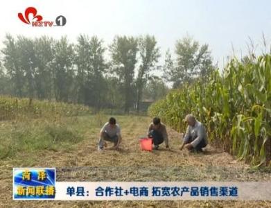 单县:合作社+电商 拓宽农产品销售渠道