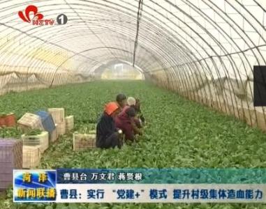 """曹县:实行 """"党建+""""模式  提升村级集体造血能力"""