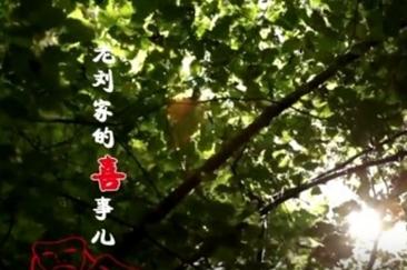 成武:移风易俗微电影《老刘家的喜事儿》