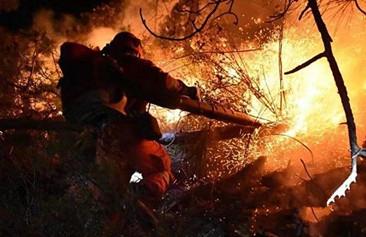 齐鲁勇士向火而行 用生命铸就新时代沂蒙精神