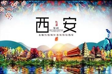 菏泽广电旅游—洛阳龙门石窟、古城西安豪华四日游