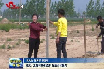成武:发展村集体经济 促进乡村振兴