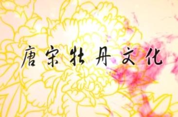 《菏泽大讲堂》:牡丹文化系列之二唐宋牡丹文化
