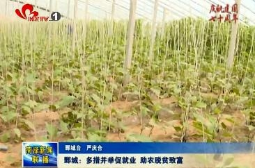 鄄城:多措并举促就业,助农脱贫致富