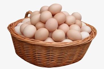 备货需求支撑蛋价 三季度将延续涨势
