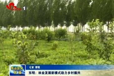 东明:林业发展新模式助力乡村振兴