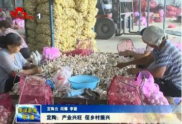 定陶:产业兴旺 促乡村振兴