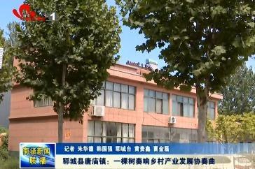 郓城县唐庙镇:一棵树奏响乡村产业发展协奏曲