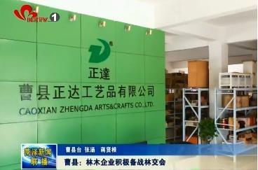 曹县:林木企业积极备战林交会