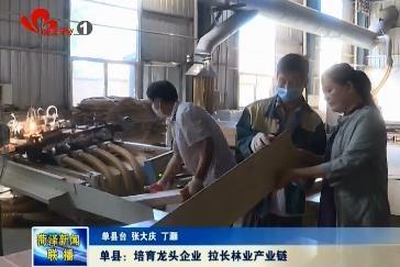 单县:培育龙头企业 拉长林业产业链