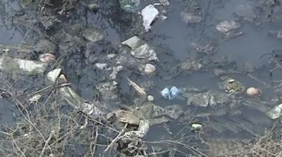 记者调查:菏泽这个县的乡镇垃圾遍地 杂草丛生 美丽乡村建设任重道远