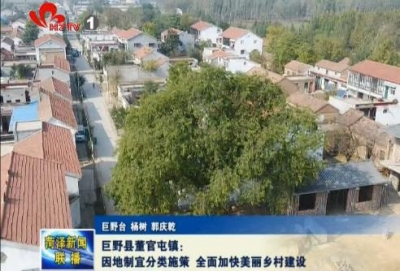 巨野县董官屯镇:因地制宜分类施策 全面加快美丽乡村建设