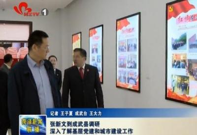 张新文到成武县调研深入了解基层党建和城市建设工作