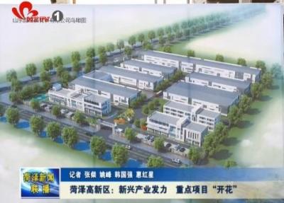 """菏泽高新区:新兴产业发力  重点项目""""开花"""""""
