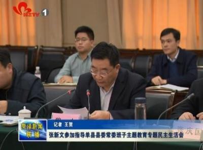 张新文参加指导单县县委常委班子主题教育专题民主生活会
