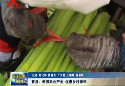 曹县:做强农业产业 促进乡村振兴