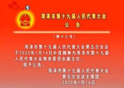 菏泽市第十九届人民代表大会公告(第十三号)