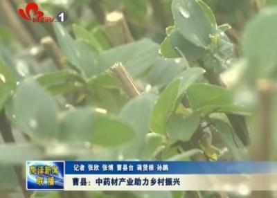 曹县:中药材产业助力乡村振兴