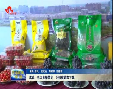 成武:电力直播带货 为扶贫助农下单