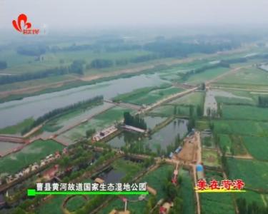 黄河故道国家生态湿地公园:万亩荷塘花盛开 游园赏花正当时