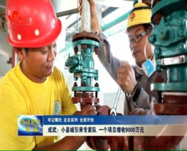 成武:小县城引来专家队 一个项目增收9000万元