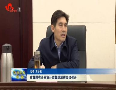 菏泽市市属国有企业审计监督组派驻会议召开
