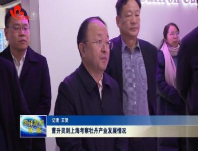曹升灵到上海考察牡丹产业发展情况