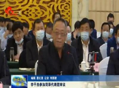 李干杰参加菏泽代表团审议