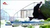 【全国脱贫攻坚先进集体】山东高速选派牡丹区第一书记工作队:补短板强产业 带动群众脱贫
