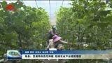 单县:发展特色香瓜种植 助推农业产业提质增效
