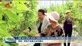 菏泽:特色产业助力乡村振兴