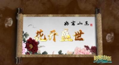 牡丹之都 花样菏泽 | 花开盛世,《好客山东》第二期节目今晚播出!