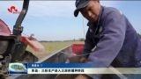 单县:三秋生产进入大面积播种阶段