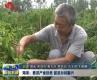 菏泽:推进产业扶贫 促进乡村振兴