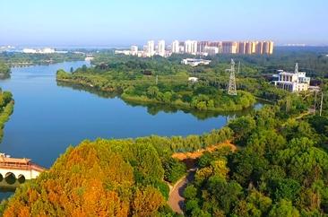 菏泽的河湖之美  诠释出生命之泽